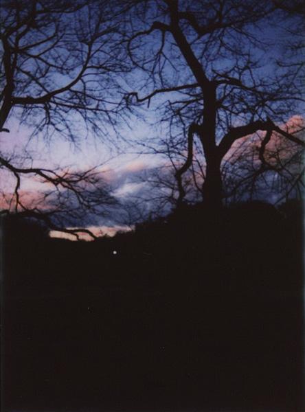 photographs : 29 : 1