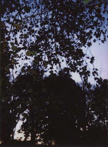 photographs : 29 : 2