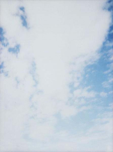 photographs : alga : 13