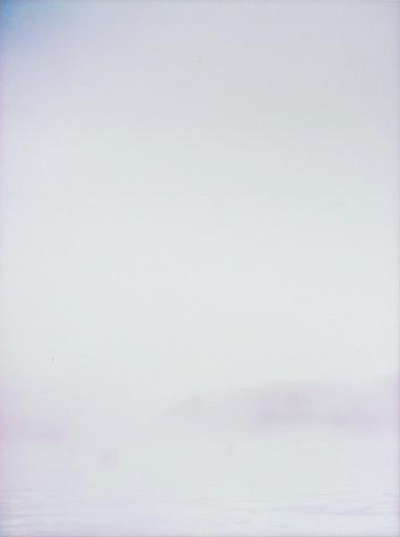 photographs : alga : 16