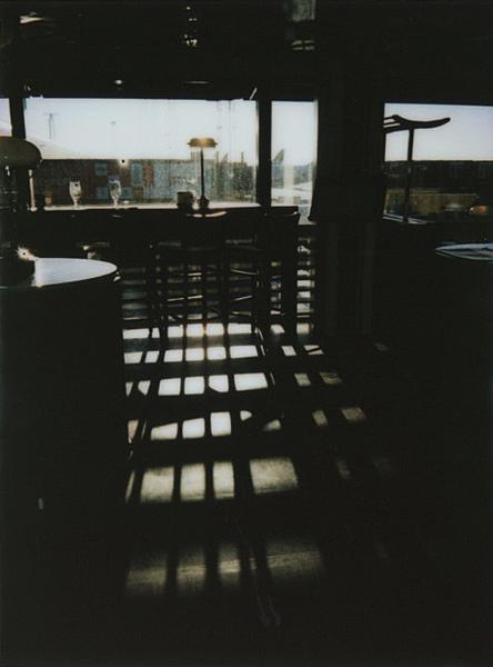 photographs : alga : 28
