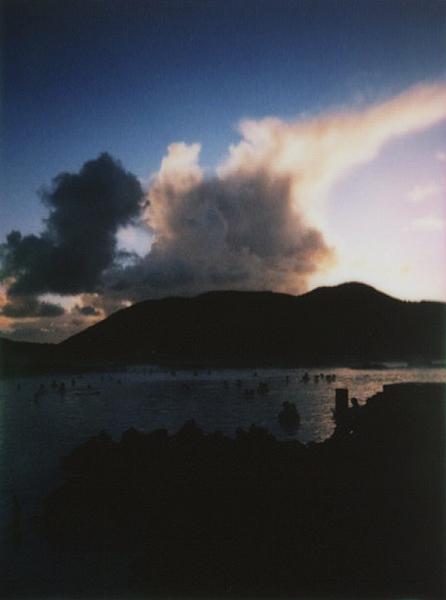 photographs : alga : 35