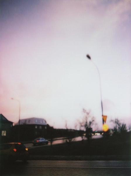 photographs : alga : 8