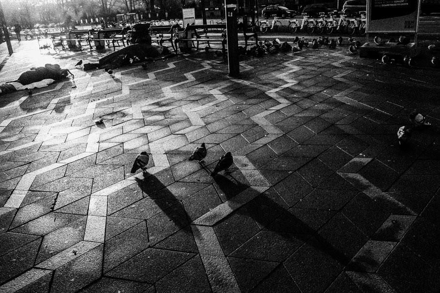 photographs : copenhagen : 105