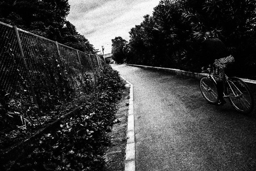 photographs : man with bike : 7