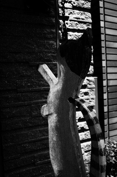 photographs : moonstone : 49