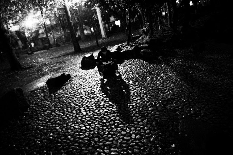 photographs : photographs : 14