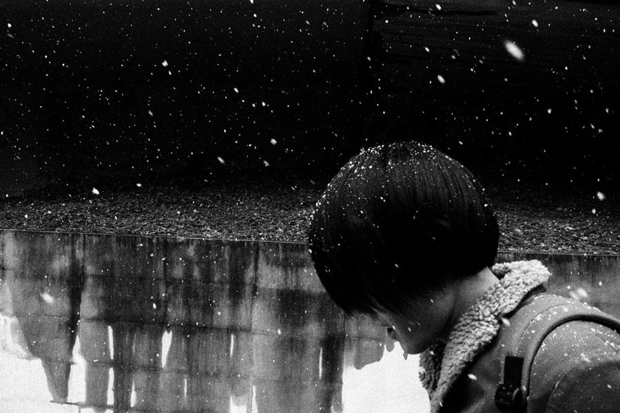 photographs : photographs : 19