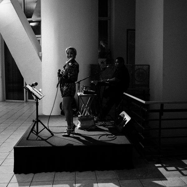 photographs : primula 15