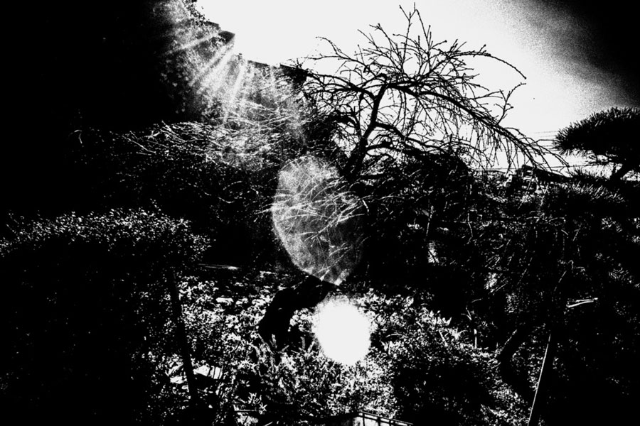 photographs : unravel : 18