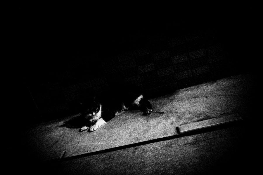 photographs : unravel : 29