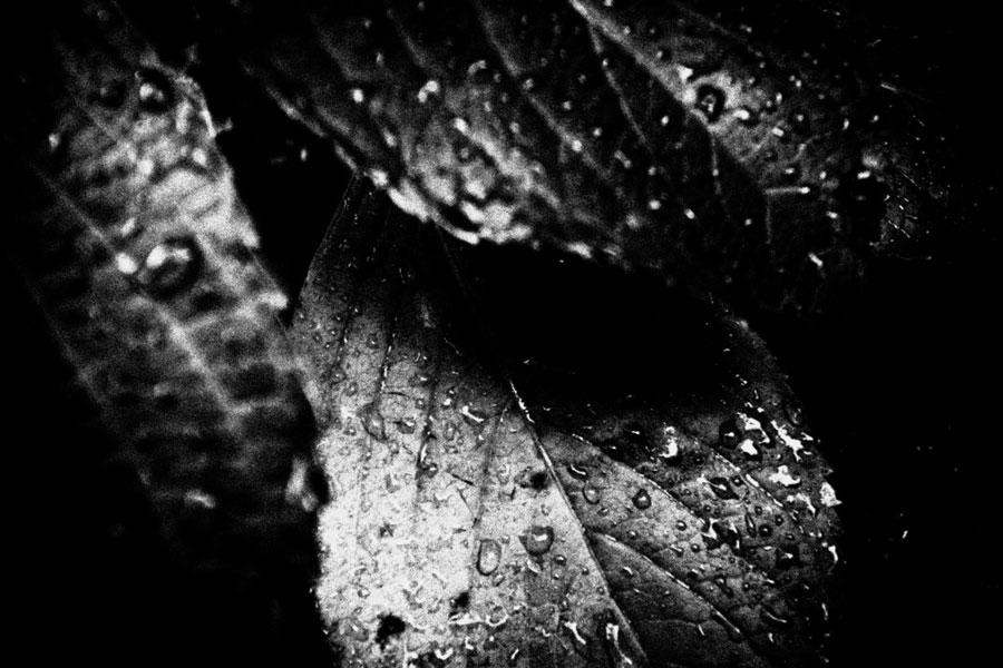 photographs : unravel : 4