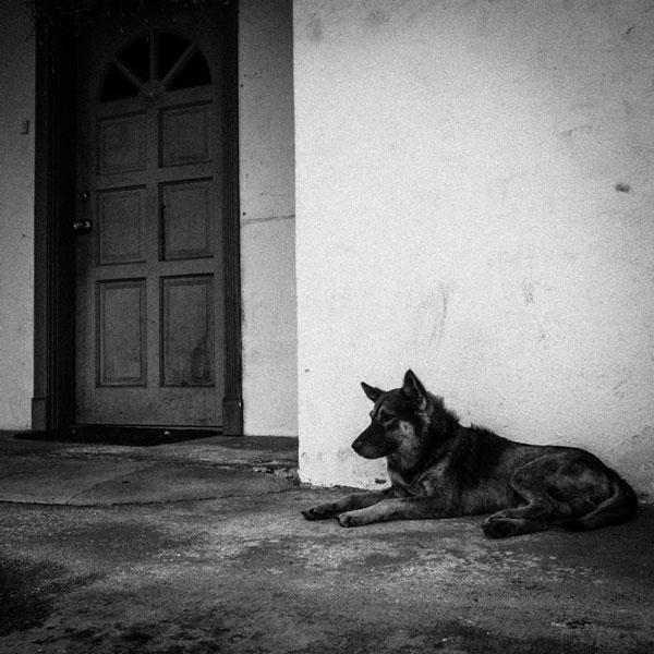 photographs : wanderlust : 27