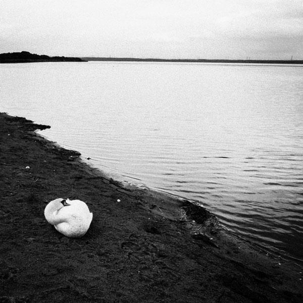 photographs : wanderlust : 70