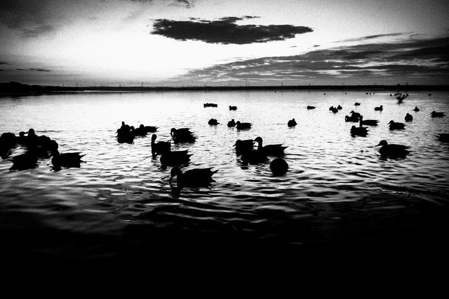 photographs : wanderlust : 89